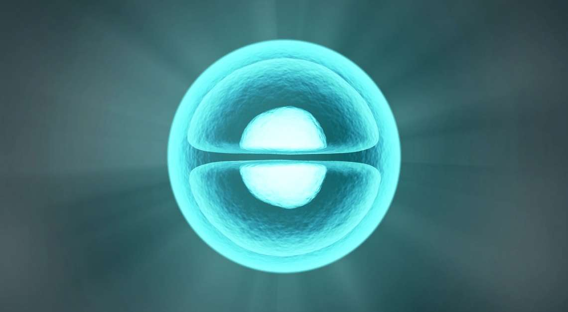 Has the time come for single embryo transfer?